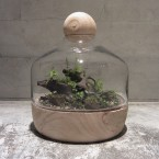 imo market TERRARIUM GARDEN A105000yen